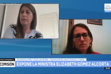 Reunión Comisión Banca de la Mujer con Elizabeth Gómez Alcorta